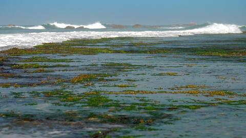 huge ocean waves arise foaming under clear blue sky Footage