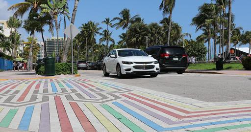 Rainbow LGBTQ Crosswalk In South Beach Miami Live Action