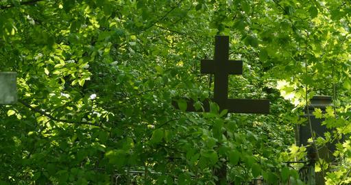 Grave cross among the greenery Footage
