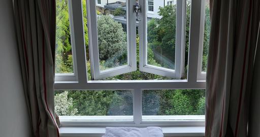 Garden View Through Window Footage