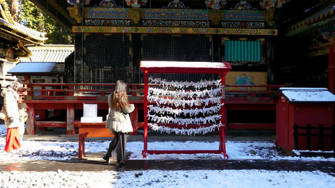 Hanging wishes at Toshogu Shrine Live影片