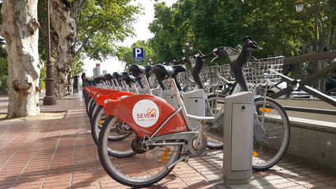 Rent a bike in the streets of Seville Live Action
