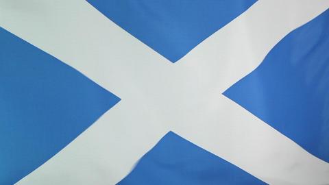 Flag of Scotland Live Action