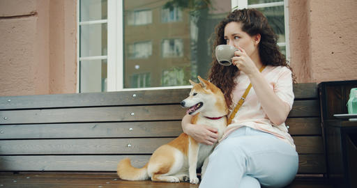 Attractive girl drinking tea outdoors in cafe and patting dog sitting on bench Footage