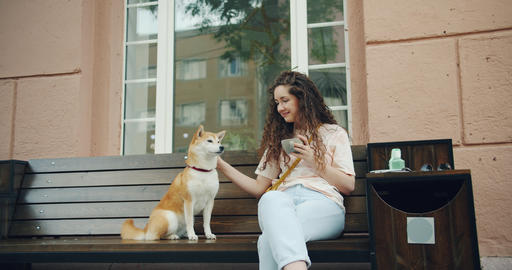 Young lady stroking dog sitting on bench outside in cafe holding cup of coffee Footage
