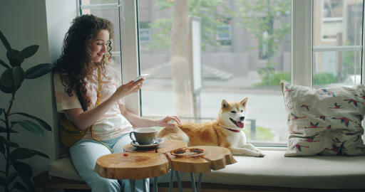 Beautiful woman caressing dog using smartphone relaxing on window sill in cafe Footage