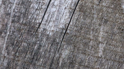 Stop motion animated wood texture background or useful…, Live Action