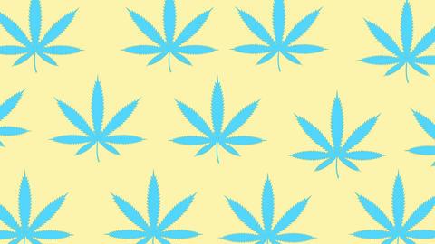 Cannabis minimal motion design animation Animation