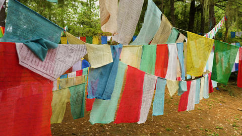Many colorful prayer flags along the trail to Tiger's Nest in Bhutan Live Action