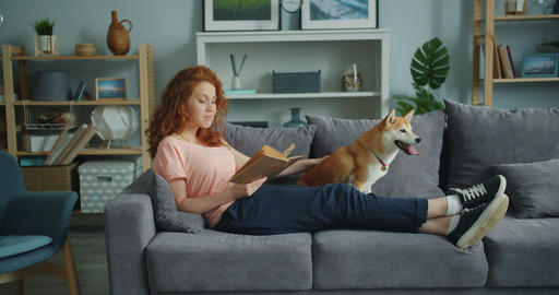 Smiling young lady reading book at home on sofa and petting cute pet dog Live Action