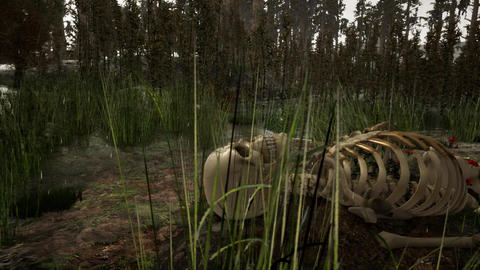 human skeleton in the forest in rainy weather. horror concept. 3d animation Animation