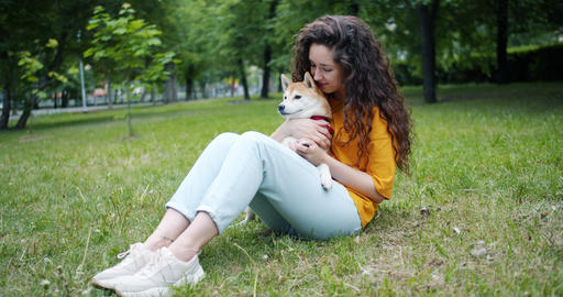 Attractive brunette stroking beautiful shiba inu dog sitting on grass in park Footage