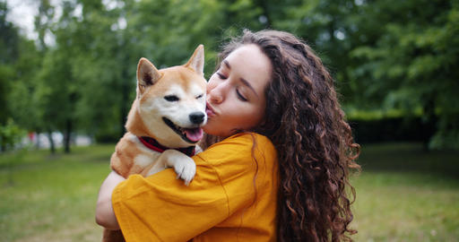 Portrait of kind lady holding dog kissing and hugging pet in park in summer Footage