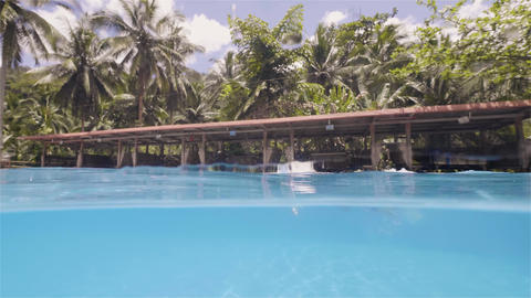 Man skillfully swims freestyle in the pool in his vacation on tropical island Footage