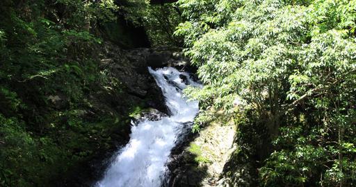 Materiya waterfall in the green forest in Amami oshima Kagoshima sunny day zoom Footage