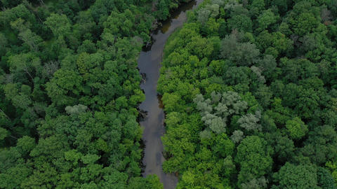 Aerial view of the beautiful landscape - the river flows among the green Footage