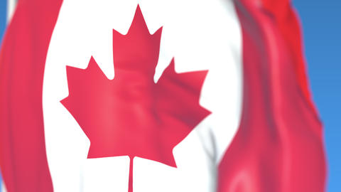 Flying national flag of Canada close-up, loopable 3D animation Footage