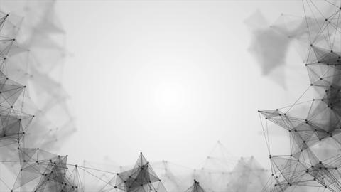 Abstract black white animated network lines Animation