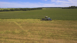 AERIAL VIEW. Combine Harvester Cutting Field Footage