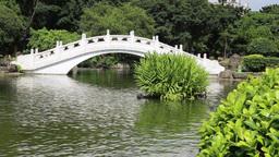 Chinese garden at Chiang Kai-shek Memorial Hall, Taipei, Taiwan Footage