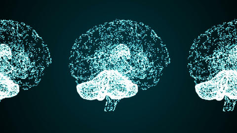 Brain 15 Animation