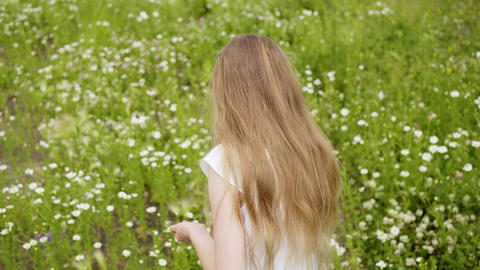 Girl Collects Petals Daisies Glade Outdoor Nature Footage