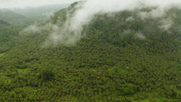 Mountains covered with rainforest, Philippines, Siargao Footage