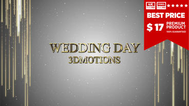 Wedding Day Opener After Effects Template