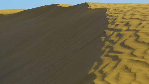 Dunes of Thar desert Footage