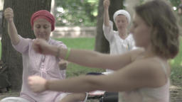 Yoga classes in the open air. Slow motion Footage