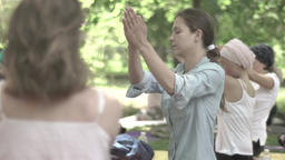 People are doing yoga exercises in the Park. Slow motion Footage