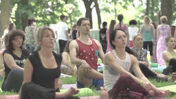 People doing yoga in the Park day. Slow motion Footage