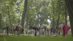 People doing yoga in the Park day Stock Video Footage