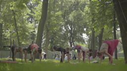 People doing yoga in the Park day Footage