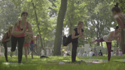Yoga in the Park day. People are practicing yoga Footage