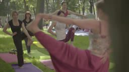 Lesson of yoga in the park in the afternoon Stock Video Footage