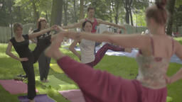 Lesson of yoga in the park in the afternoon Footage