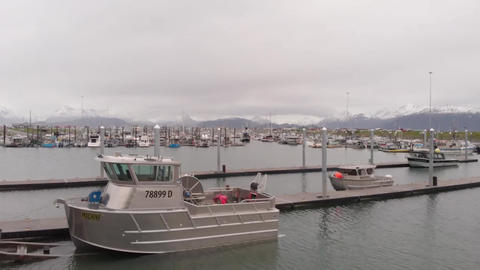 Brand new commercial fishing boat Live Action