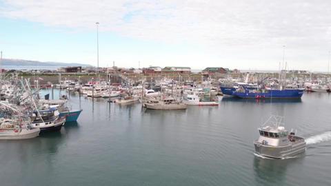 Commercial fishing boat in Alaska harbor Live Action