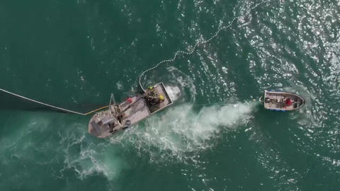 Aerial view of commercial salmon fishing in Alaska Live Action