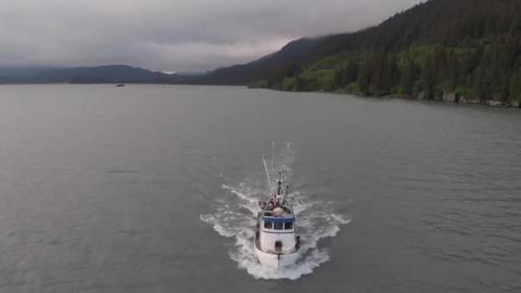 Salmon boat underway Live Action