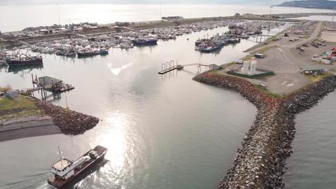 Homer Alaska boat harbor Live Action