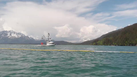 Salmon fishing in Alaska Live Action