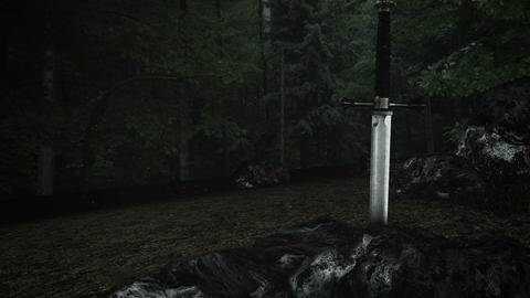 Medieval Iron Sword Stuck Inside a Rock in a Forest Live Action