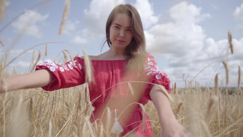 Pretty carefree woman enjoying nature and sunlight in wheat field at incredible Footage