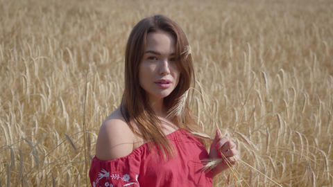 Pretty young woman enjoying nature and sunlight in wheat field at incredible Footage
