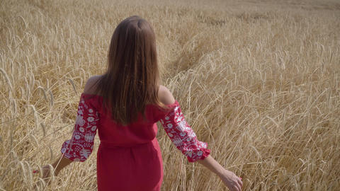 Beautiful carefree woman with long hair running through the wheat field touching Live Action