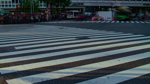 A timelapse of people at the crossing in Shibuya Tokyo daytime slow shutter tilt ビデオ