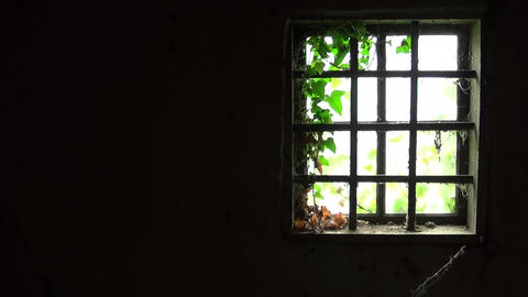 Old window with bars in the interior of old and abandoned house Footage