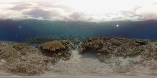 360 vr a colorful coral reef in Philippines VR 360° Video